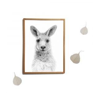 Kangoeroe (voorbeeld sfeerbeeld)