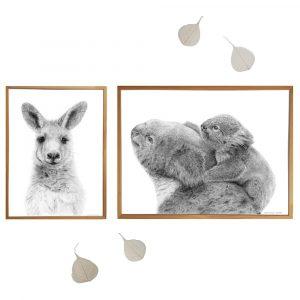 Combinatie Australië - Koala & Kangoeroe (sfeerbeeld)
